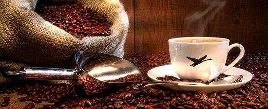 lir-cafe-1